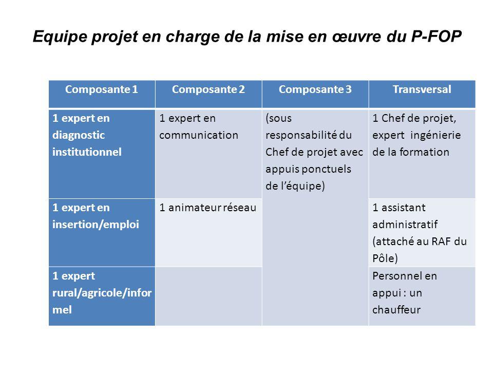 Equipe projet en charge de la mise en œuvre du P-FOP Composante 1Composante 2Composante 3Transversal 1 expert en diagnostic institutionnel 1 expert en