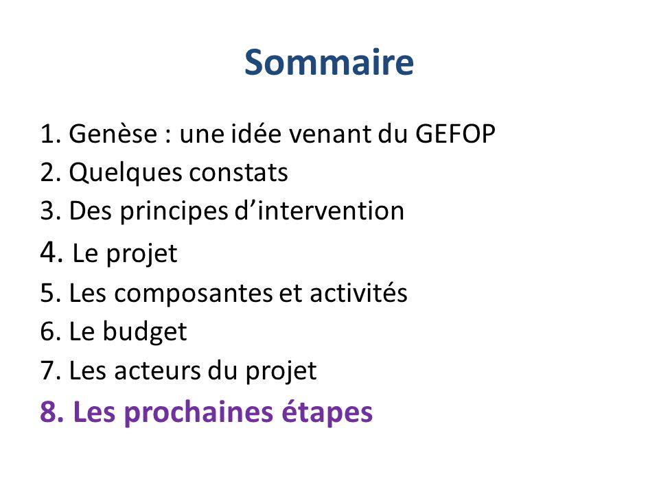 Sommaire 1. Genèse : une idée venant du GEFOP 2. Quelques constats 3. Des principes d'intervention 4. Le projet 5. Les composantes et activités 6. Le
