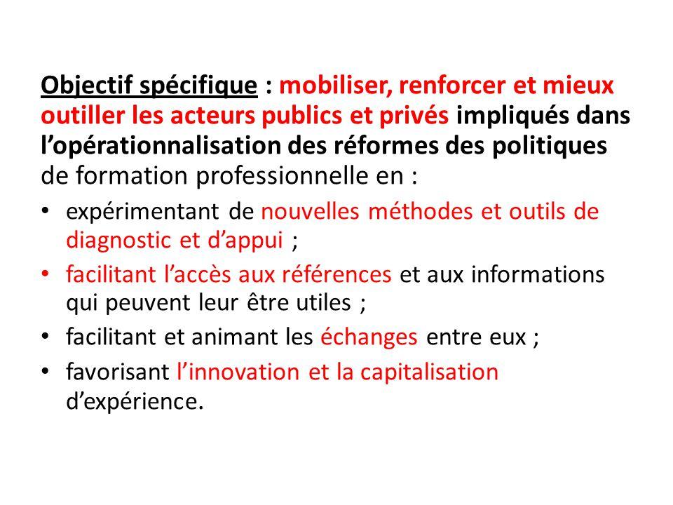 Objectif spécifique : mobiliser, renforcer et mieux outiller les acteurs publics et privés impliqués dans l'opérationnalisation des réformes des polit