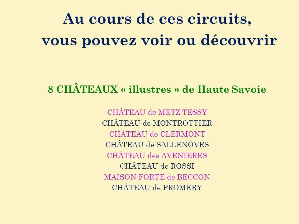 Au cours de ces circuits, vous pouvez voir ou découvrir 8 CHÂTEAUX « illustres » de Haute Savoie CHÂTEAU de METZ TESSY CHÂTEAU de MONTROTTIER CHÂTEAU
