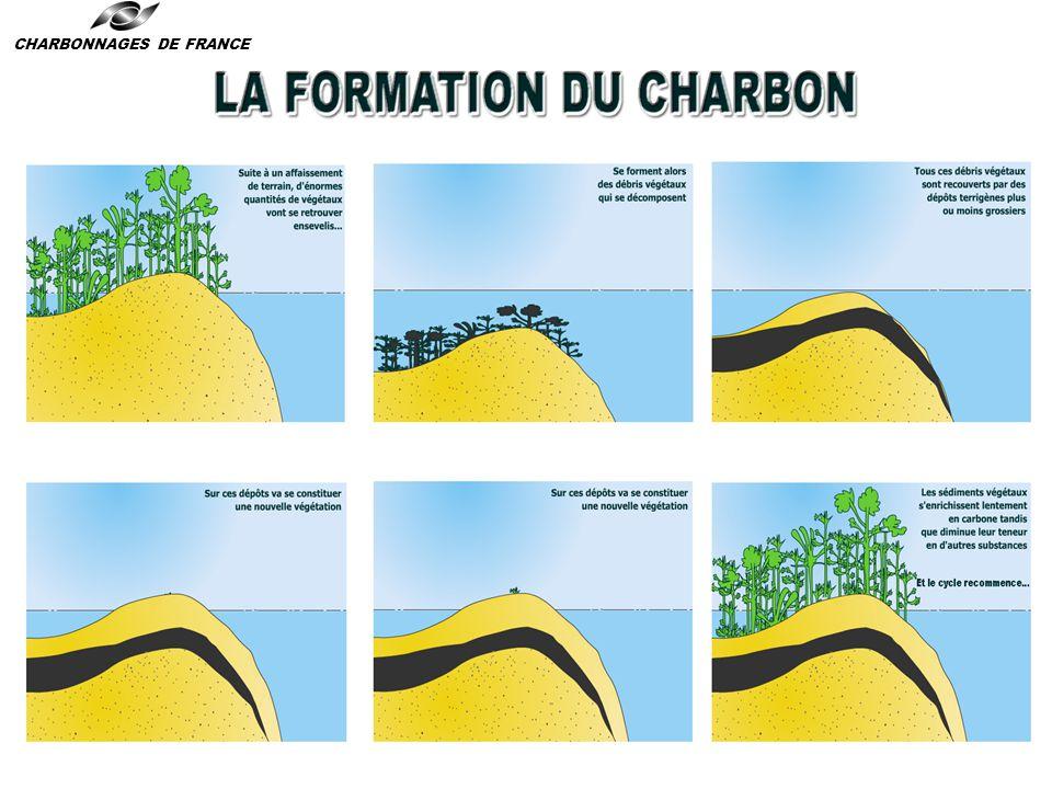 Le charbon : formation et réserves CHARBONNAGES DE FRANCE