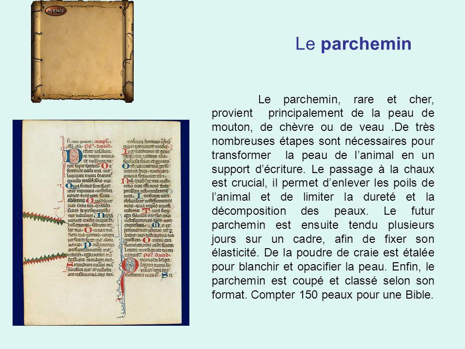 Le parchemin Le parchemin, rare et cher, provient principalement de la peau de mouton, de chèvre ou de veau.De très nombreuses étapes sont nécessaires pour transformer la peau de l'animal en un support d'écriture.