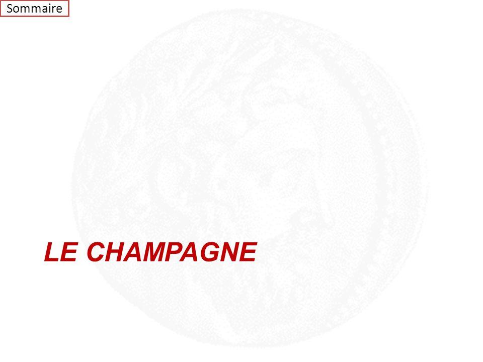Vins d'Ailleurs Sommaire VIN D'ARGENTINEL.L. CLOS DE LOS SIETE 200952 500 VIN DU PORTUGALL.L. EX-AEQUO Chapoutier150 000 Vin RougeVin Blanc Prix Hors
