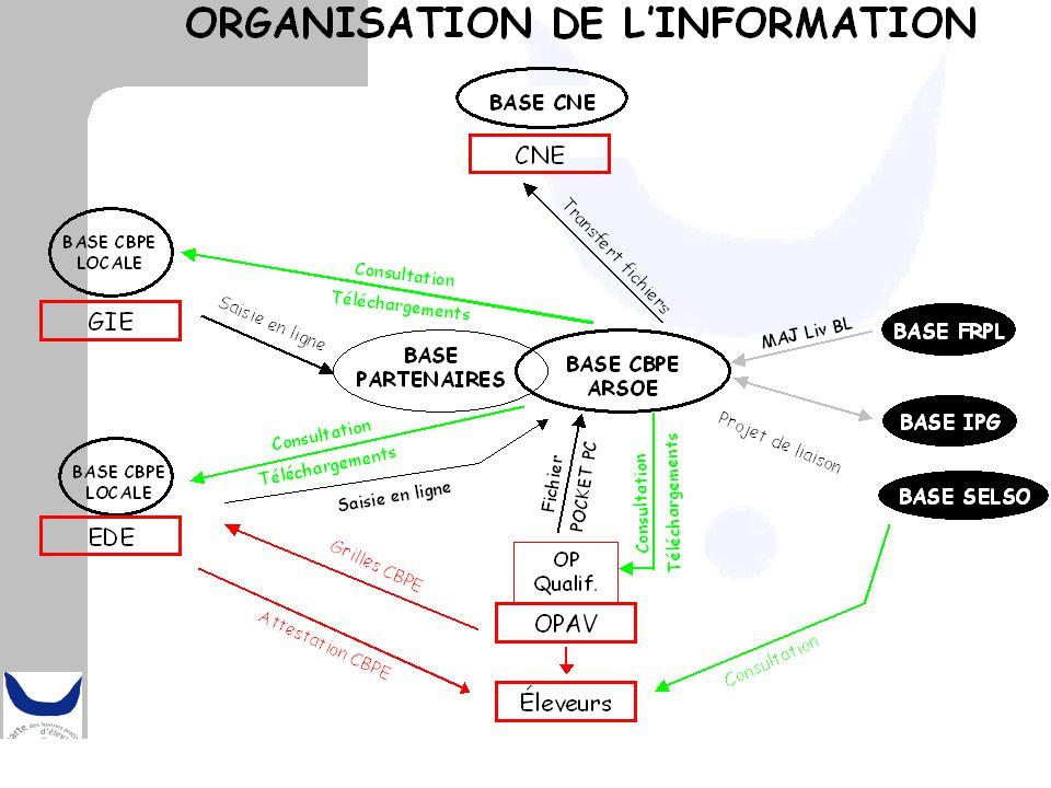Les OPAV, GIE et EDE peuvent télécharger différents types de fichiers pour mettre à jour leur propre base de donnée ou travailler sur Excel Les GIE disposent d'un module générant le fichier à transmettre à la base CBPE Nationale