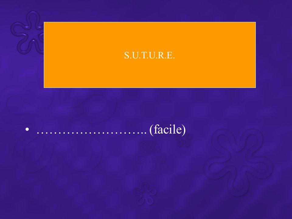 …………………….. (facile) S.U.T.U.R.E.