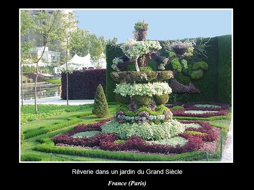 Les couleurs de la paix France (Angers)
