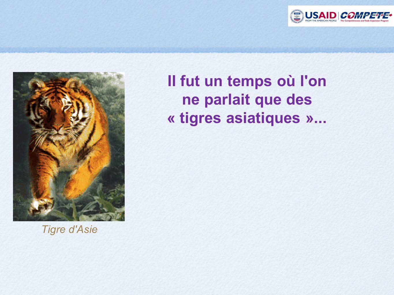 Tigre d Asie Il fut un temps où l on ne parlait que des « tigres asiatiques »...