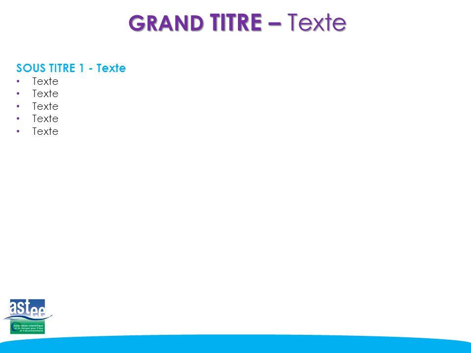 GRAND TITRE – Texte SOUS TITRE 1 - Texte Texte