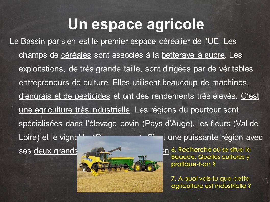 Le Bassin parisien est le premier espace céréalier de l'UE. Les champs de céréales sont associés à la betterave à sucre. Les exploitations, de très gr
