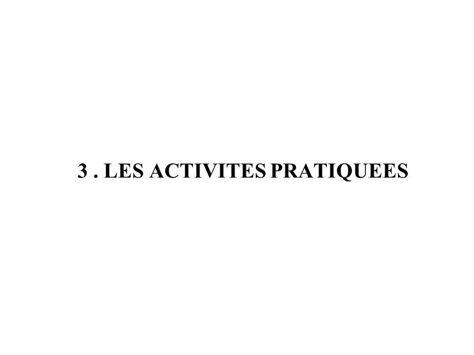 3. LES ACTIVITES PRATIQUEES