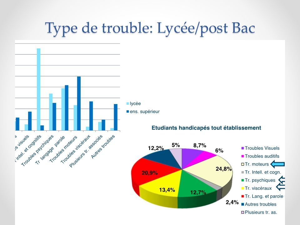 Type de handicap/établissements formations post-Bac