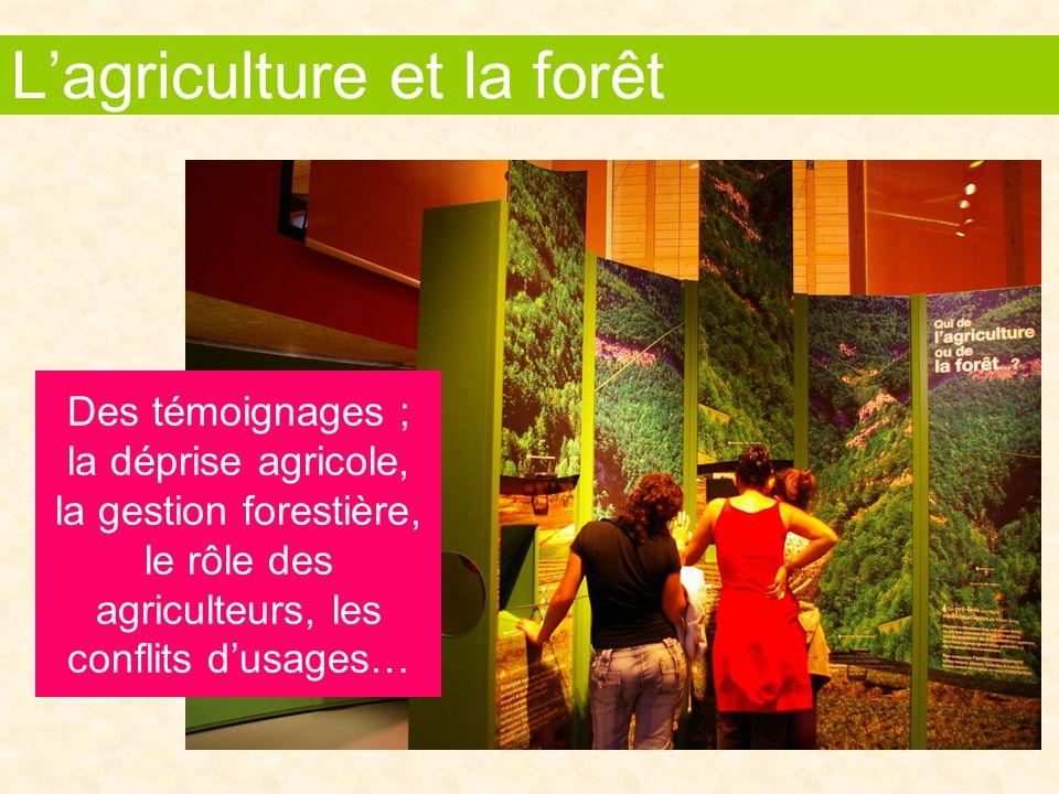 Des témoignages ; la déprise agricole, la gestion forestière, le rôle des agriculteurs, les conflits d'usages… L'agriculture et la forêt