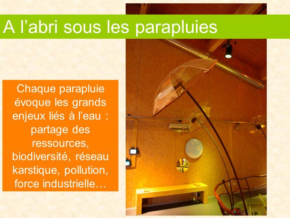 Chaque parapluie évoque les grands enjeux liés à l'eau : partage des ressources, biodiversité, réseau karstique, pollution, force industrielle… A l'abri sous les parapluies