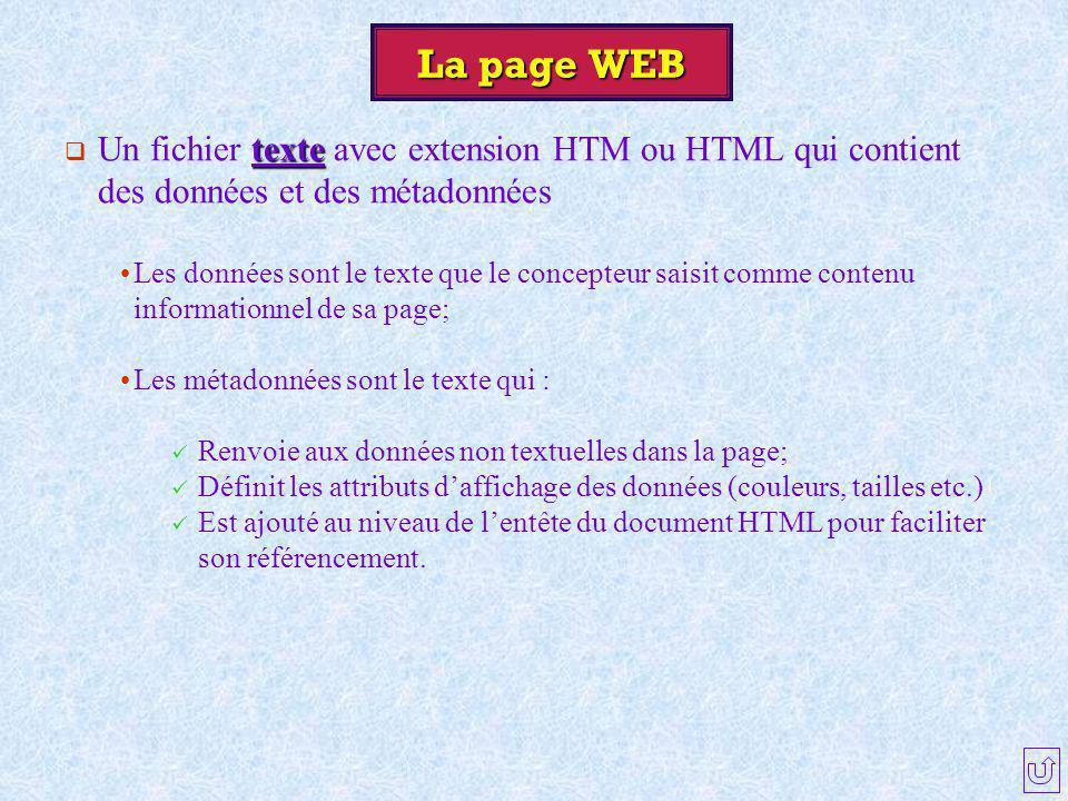 La page WEB texte  Un fichier texte avec extension HTM ou HTML qui contient des données et des métadonnées Les données sont le texte que le concepteu