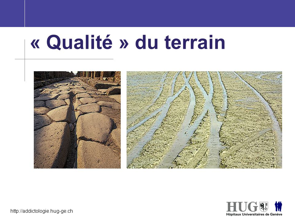 http://addictologie.hug-ge.ch « Qualité » du terrain