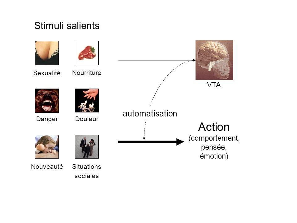 Stimuli salients Sexualité Nourriture DangerDouleur NouveautéSituations sociales Action (comportement, pensée, émotion) VTA automatisation
