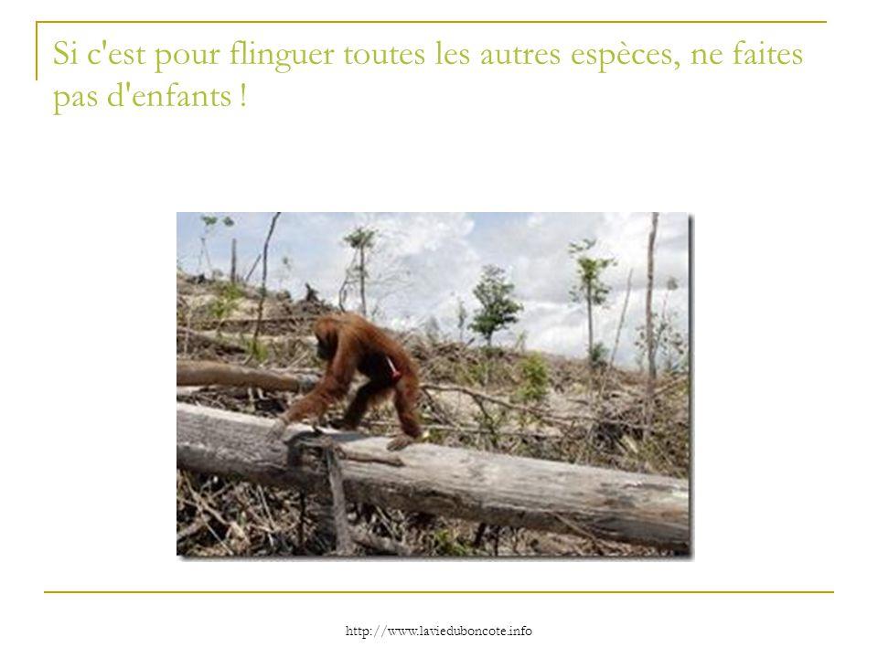 http://www.lavieduboncote.info Si c'est pour flinguer toutes les autres espèces, ne faites pas d'enfants !