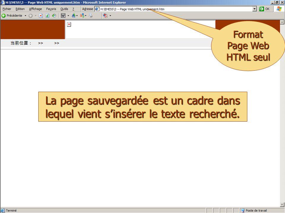 © Thierry Pairault 2005 Format Page Web HTML seul La page sauvegardée est un cadre dans lequel vient s'insérer le texte recherché.