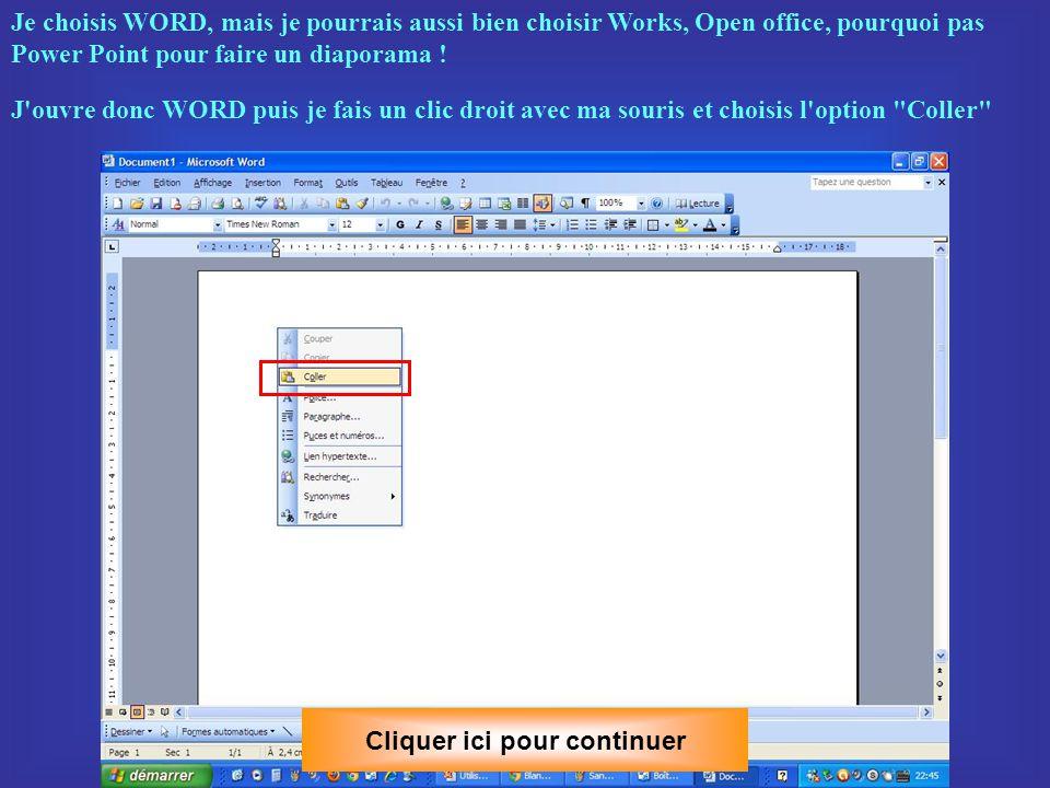 Je la sélectionne avec ma souris puis je fais un clic du bouton droit et je choisis l option Copier.