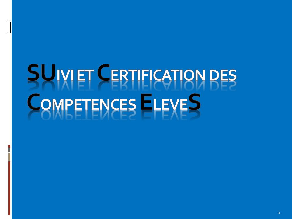 Introduction L'objectif principal est d'arriver à suivre chaque élève dans l'acquisition de ses compétences, évaluées ou non aux différents examens (BEP et Bac Pro).