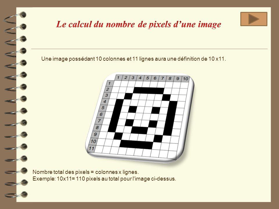 Une image possédant 10 colonnes et 11 lignes aura une définition de 10 x11. Nombre total des pixels = colonnes x lignes. Exemple: 10x11= 110 pixels au