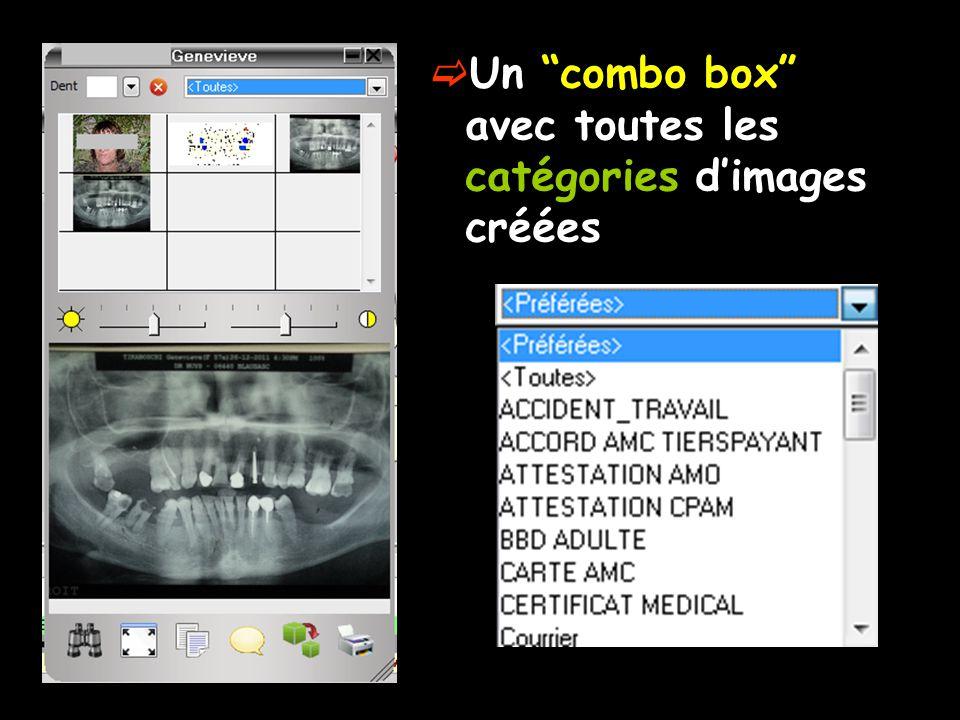 Un combo box avec toutes les catégories d'images créées