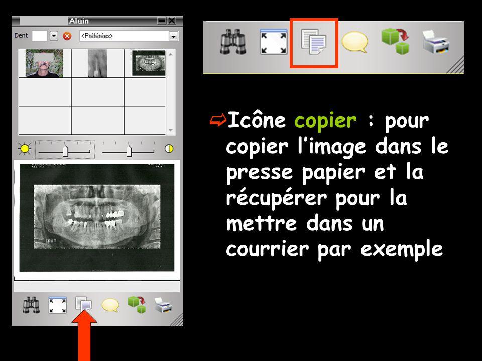  Icône copier : pour copier l'image dans le presse papier et la récupérer pour la mettre dans un courrier par exemple