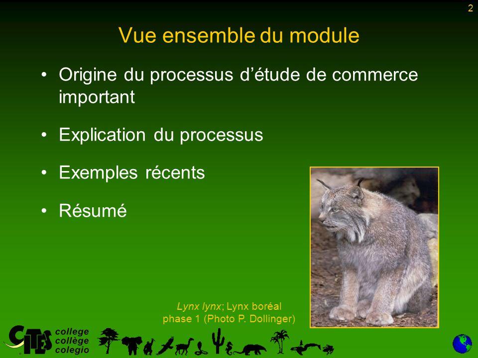 2 Vue ensemble du module Origine du processus d'étude de commerce important Explication du processus Exemples récents Résumé Lynx lynx; Lynx boréal phase 1 (Photo P.