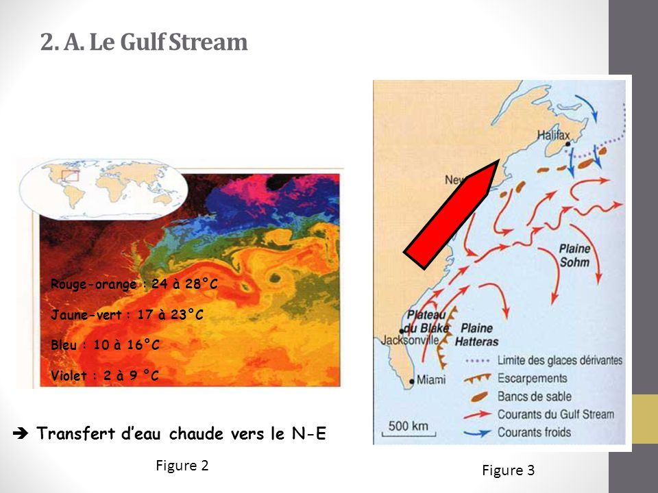 2. A. Le Gulf Stream Figure 2 Figure 3 Rouge-orange : 24 à 28°C Jaune-vert : 17 à 23°C Bleu : 10 à 16°C Violet : 2 à 9 °C  Transfert d'eau chaude ver