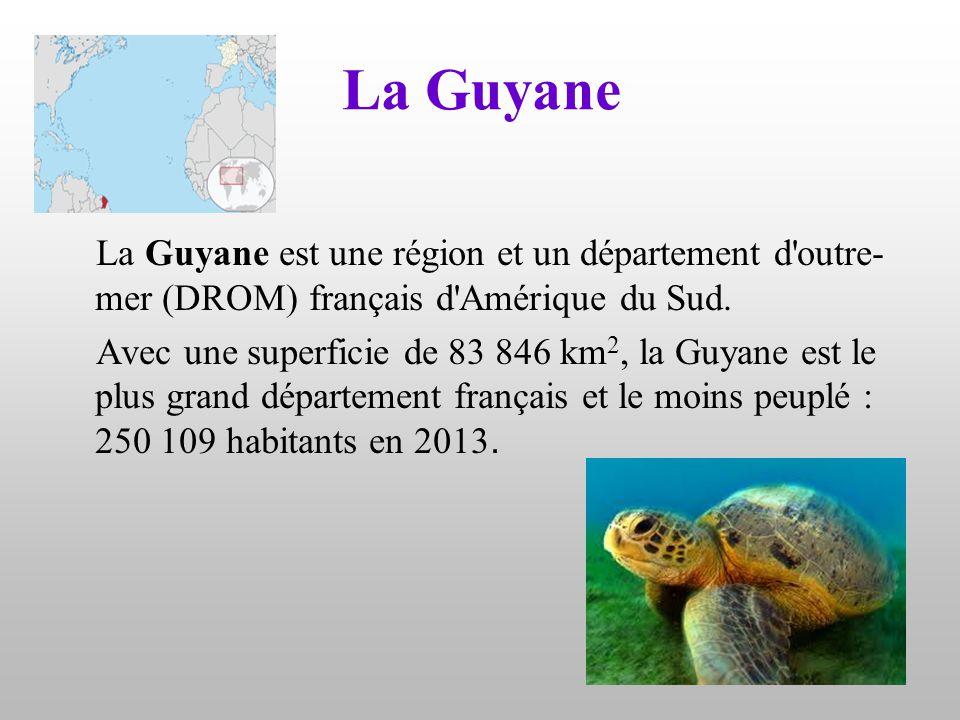 La Guyane La Guyane est une région et un département d'outre- mer (DROM) français d'Amérique du Sud. Avec une superficie de 83 846 km 2, la Guyane est
