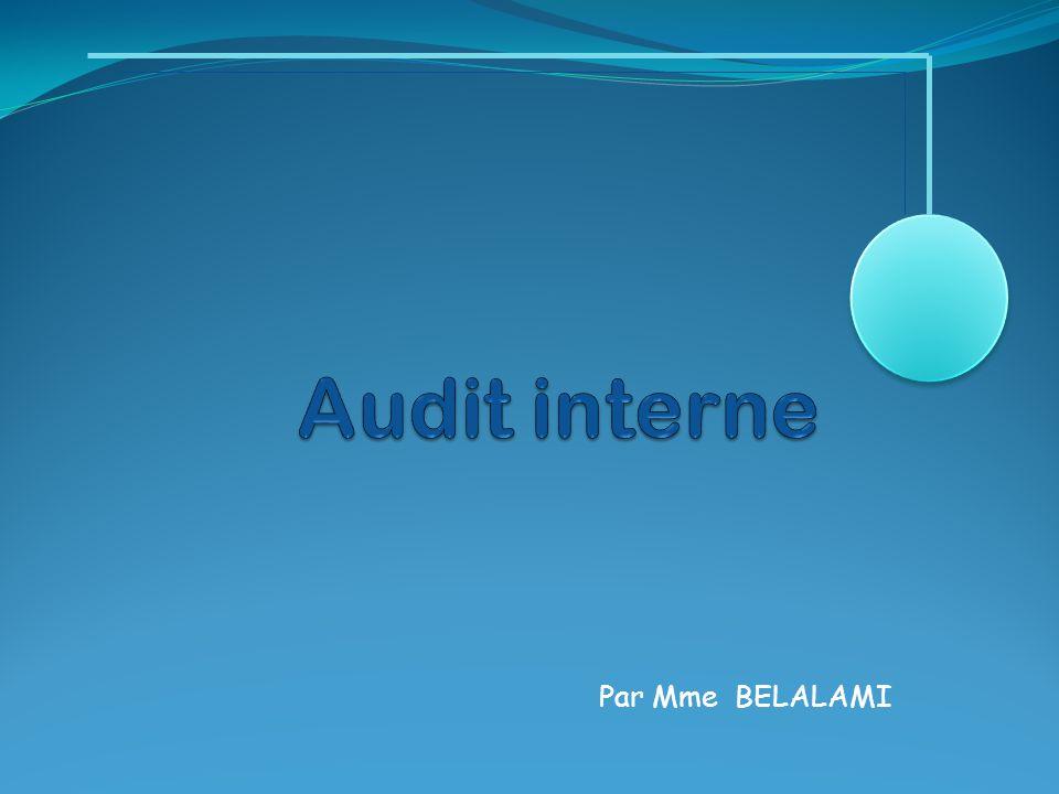 I- Règles et normes d'audit: La pratique de l audit interne nécessite un professionnalisme et un savoir faire de hauts niveaux, que les auditeurs internes ne peuvent atteindre sans avoir recours à un cadre de référence établi par leur profession.