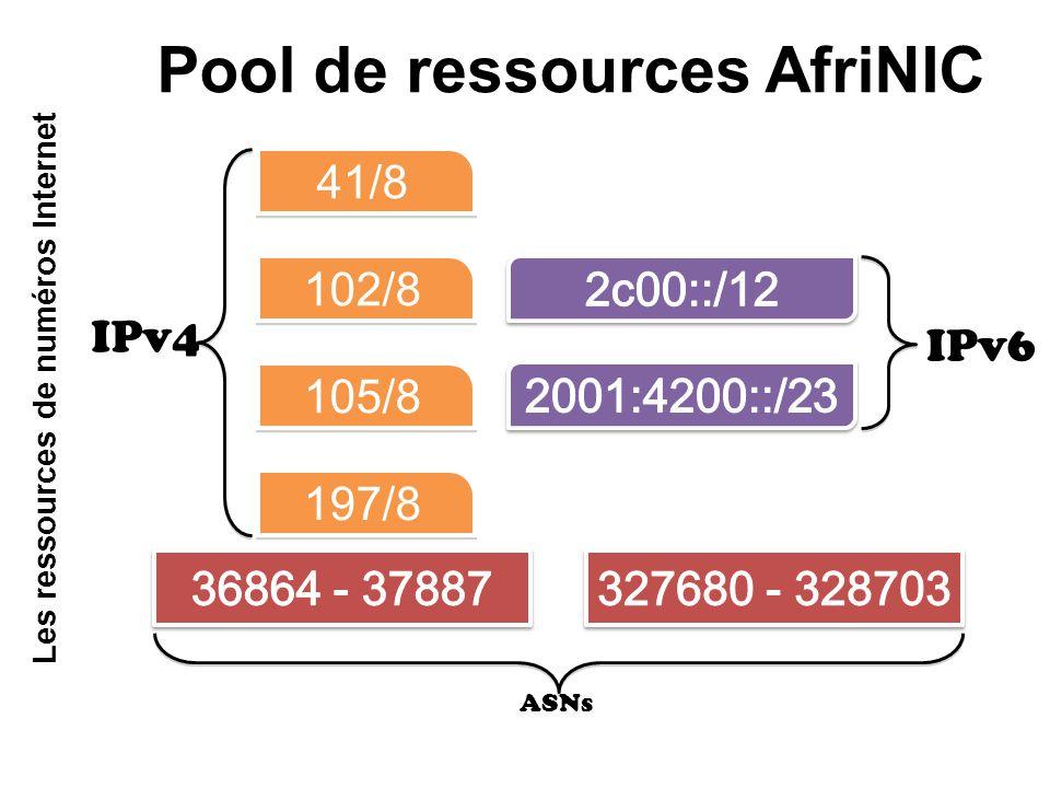 Pool de ressources AfriNIC 41/8 102/8 105/8 197/8 IPv6 IPv4 ASNs