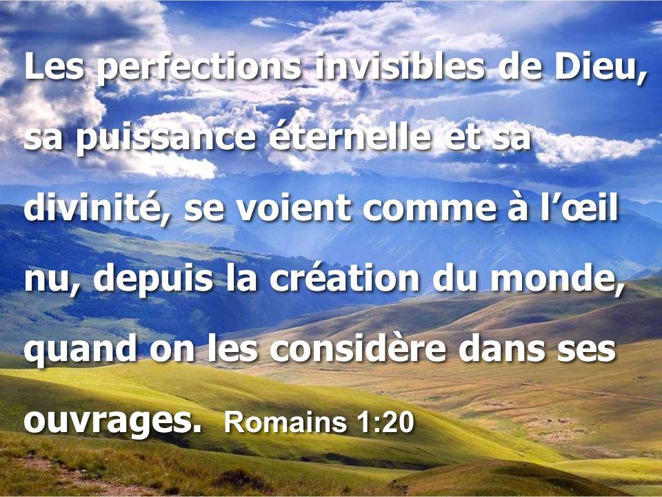 Les perfections invisibles de Dieu, sa puissance éternelle et sa divinité, se voient comme à l'œil nu, depuis la création du monde, quand on les consi