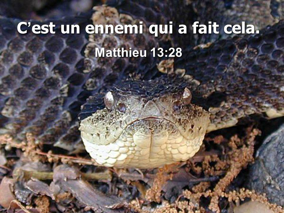 C'est un ennemi qui a fait cela. Matthieu 13:28 C'est un ennemi qui a fait cela. Matthieu 13:28