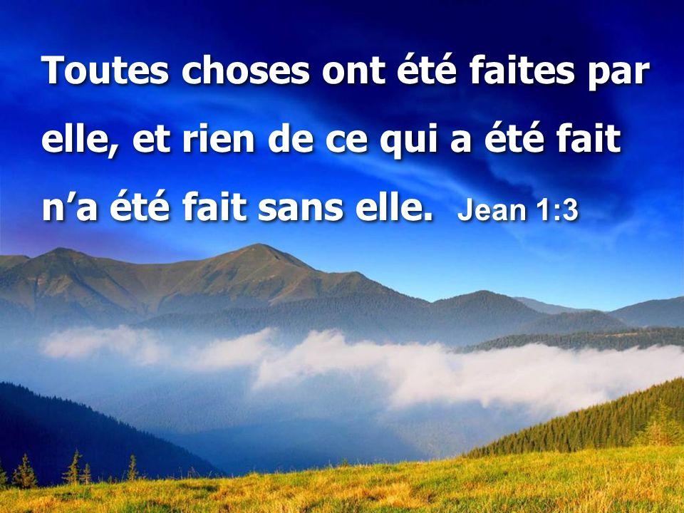 C'est par la foi que nous reconnaissons que le monde a été formé par la parole de Dieu, en sorte que ce qu'on voit n'a pas été fait de choses visibles.