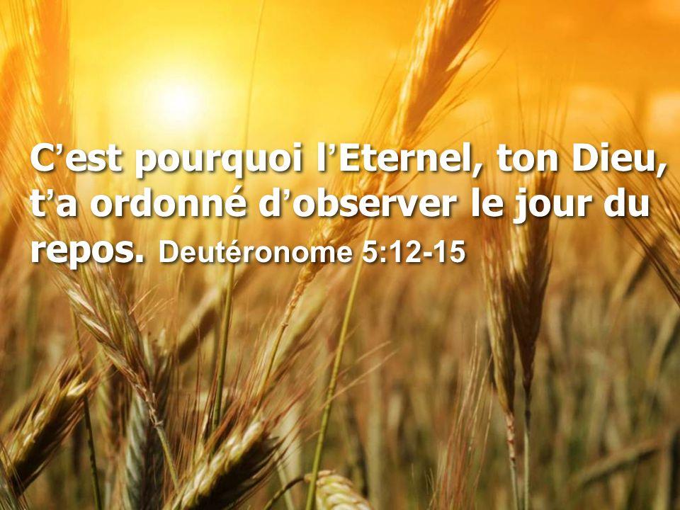 C ' est pourquoi l ' Eternel, ton Dieu, t ' a ordonné d ' observer le jour du repos. Deutéronome 5:12-15
