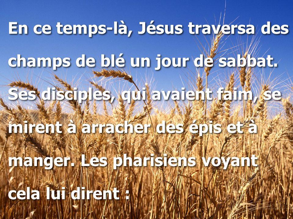 En ce temps-là, Jésus traversa des champs de blé un jour de sabbat. Ses disciples, qui avaient faim, se mirent à arracher des épis et à manger. Les ph