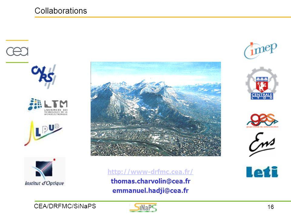 16 CEA/DRFMC/SiNaPS Collaborations http://www-drfmc.cea.fr/ thomas.charvolin@cea.fr emmanuel.hadji@cea.fr