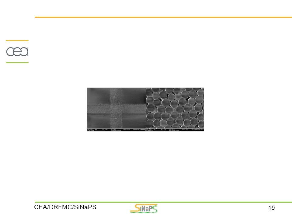 19 CEA/DRFMC/SiNaPS