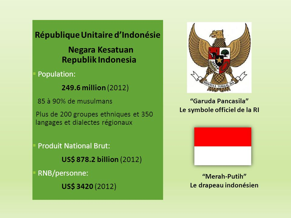 République Unitaire d'Indonésie Negara Kesatuan Republik Indonesia  Population: 249.6 million (2012) 85 à 90% de musulmans Plus de 200 groupes ethniq