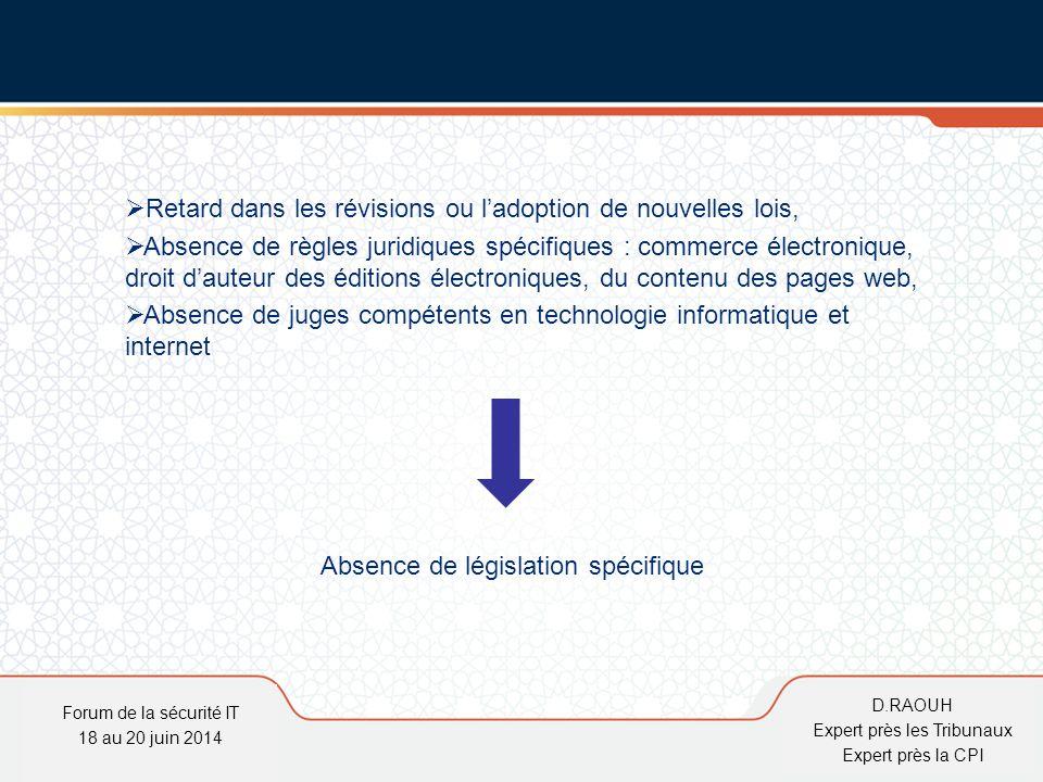 D.Raouh  Retard dans les révisions ou l'adoption de nouvelles lois,  Absence de règles juridiques spécifiques : commerce électronique, droit d'auteu