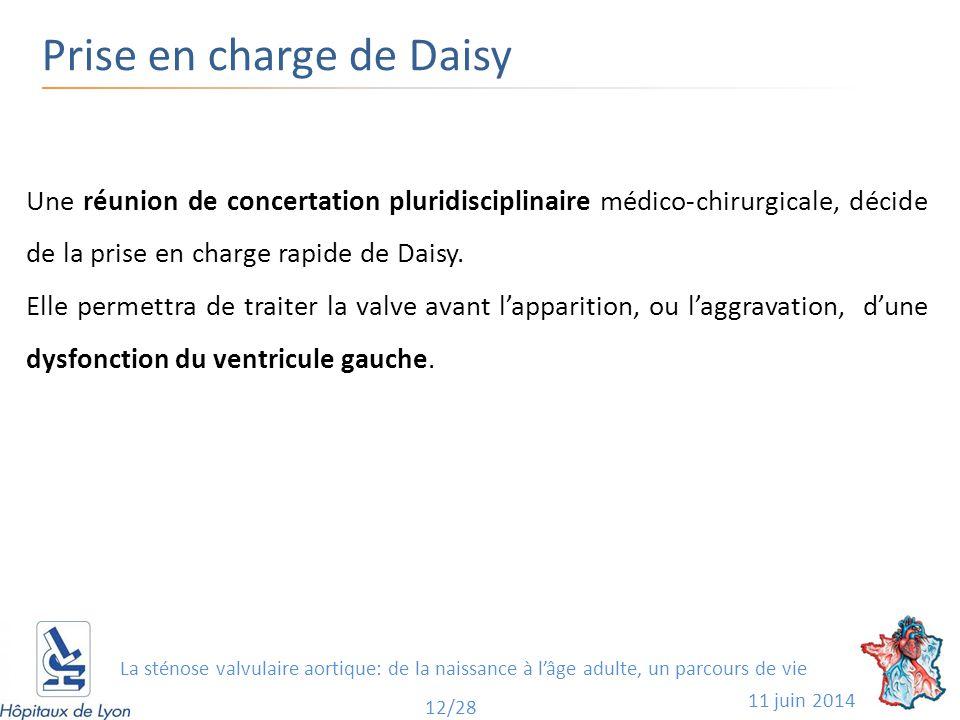 Prise en charge de Daisy 11 juin 2014 12/28 Une réunion de concertation pluridisciplinaire médico-chirurgicale, décide de la prise en charge rapide de Daisy.