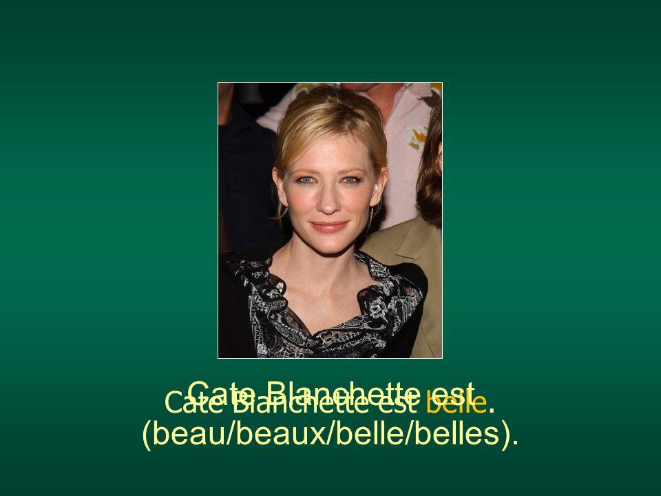 Cate Blanchette est belle. Cate Blanchette est (beau/beaux/belle/belles).