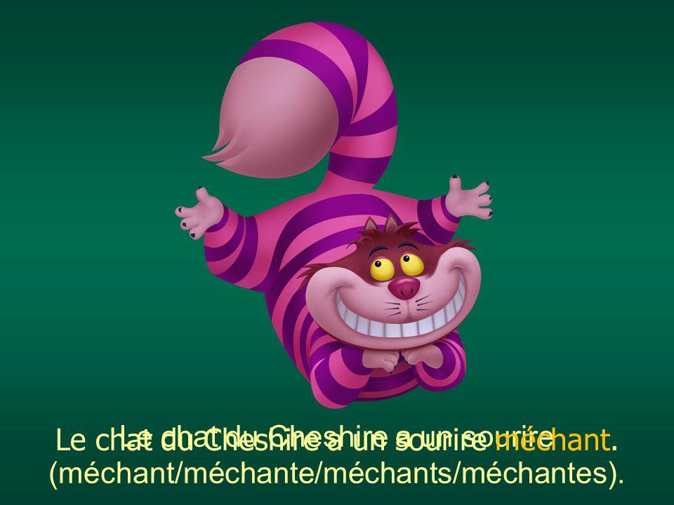 Le chat du Cheshire a un sourire (méchant/méchante/méchants/méchantes). Le chat du Cheshire a un sourire méchant.