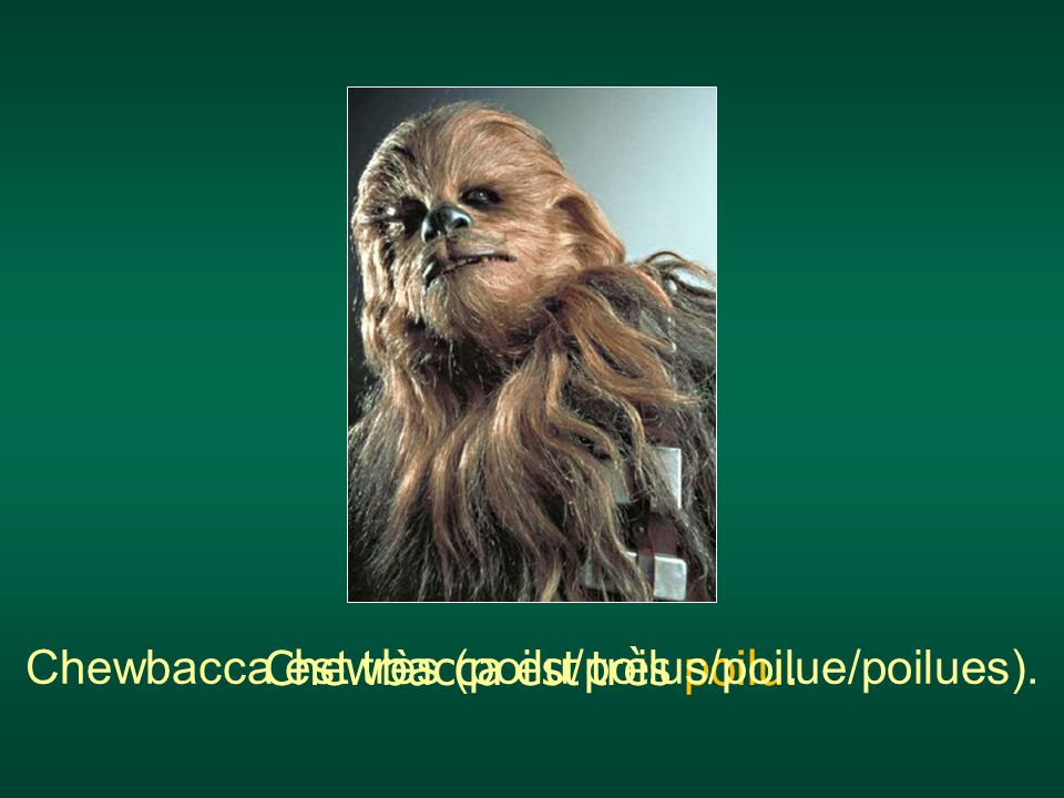 Chewbacca est très poilu. Chewbacca est très (poilu/poilus/poilue/poilues).