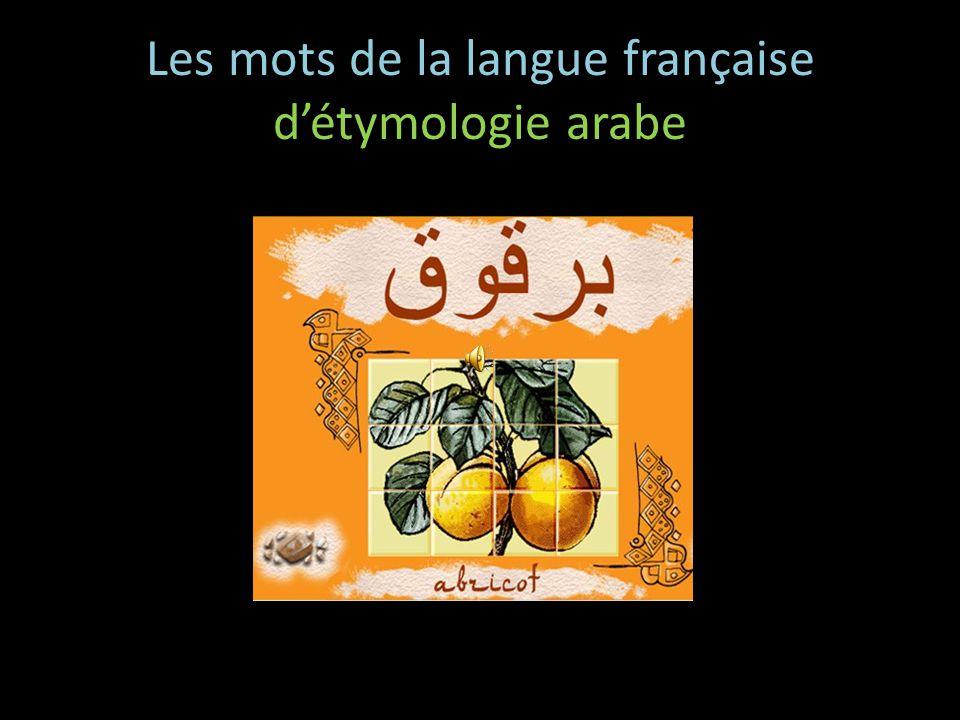 baldaquin vient du mot arabe بغدادي (ba ḡ dādīy) Mehdi fennec vient du mot arabe فنك (fanāk) Nejma