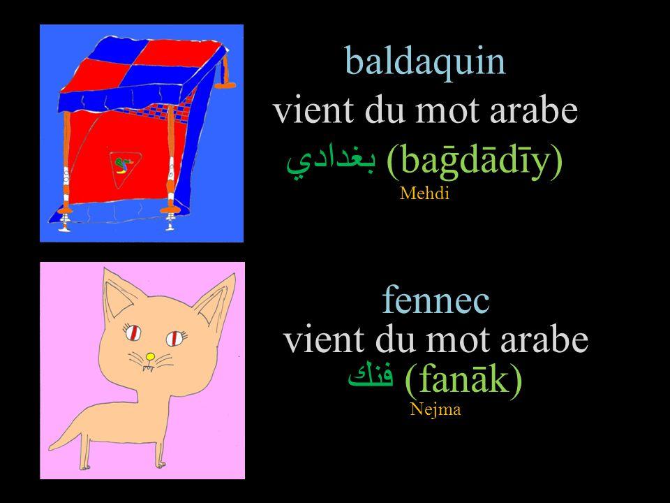 varan vient du mot arabe ورل (waral) Nour girafe vient du mot arabe زرافة (zarāfa) Radia