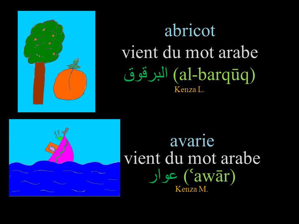 gazelle vient du mot arabe غزالة ( ḡ azāla) Sarah raquette vient du mot arabe راحة (rā ḥ a) Yahya