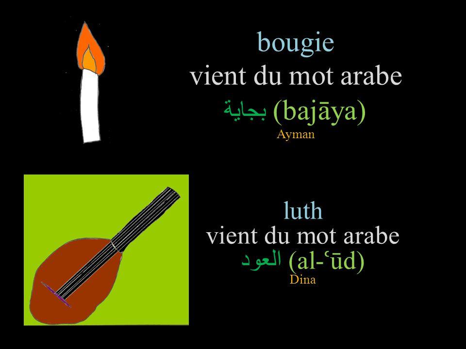 bougie vient du mot arabe بجاية (bajāya) Ayman luth vient du mot arabe العود (al- ʿ ūd) Dina