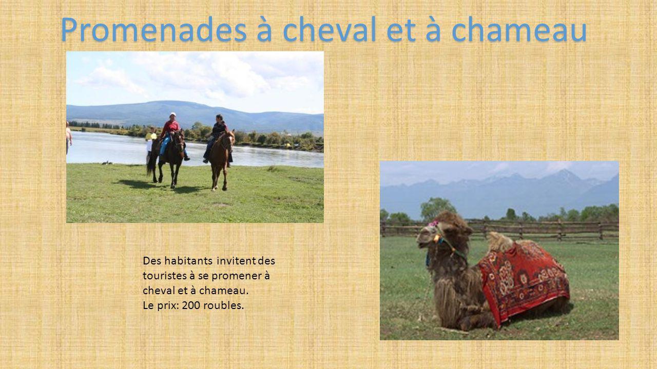 Des habitants invitent des touristes à se promener à cheval et à chameau. Le prix: 200 roubles. Promenades à cheval et à chameau